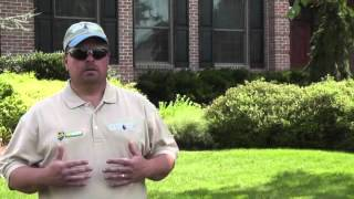 Organic Lawn Care with Tech Terra Environmental and Hydro Green