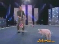 Trained Pig