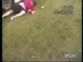 Fat Kid Falls Head First Off A Van