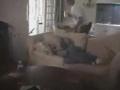 Guy Slaps His Sleeping Friend