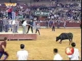 Stripped by a Bull