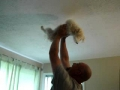 Spider Dog, Spider Dog, Does Whatever A Spiderdog Can