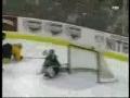 Amazing hockey goal