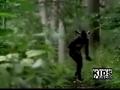 Funny deer hunt skit