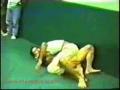 Gracie vs Kungfu Expert