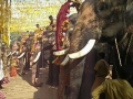 Bhavaneeshwara Temple elephants
