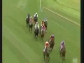 Horse-Racing High-Jump!