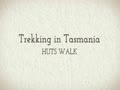 tasmania guided walks